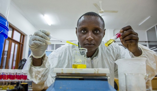 Dr. Hilonga working in the lab